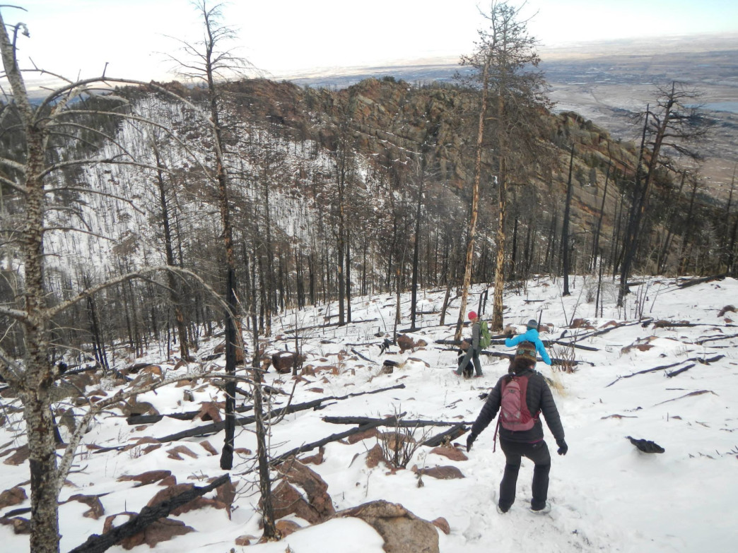 Descending South Boulder Peak's burn zone in the snow.