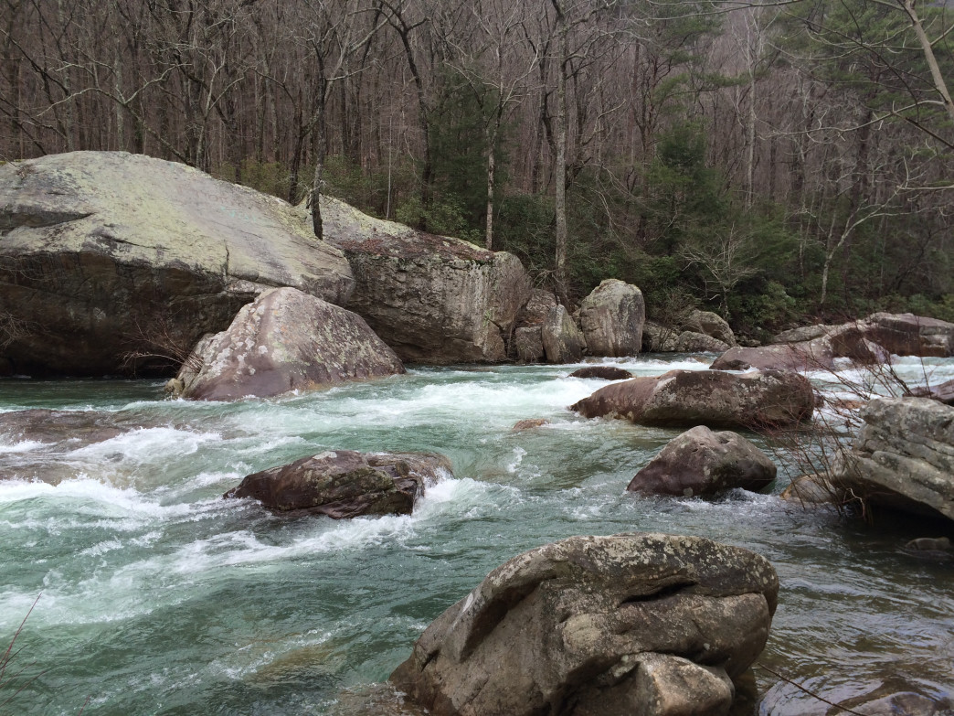 Chickamauga Creek provides a scenic backdrop to the Hogskin Loop Trail, and attracts many paddlers to its waters too.