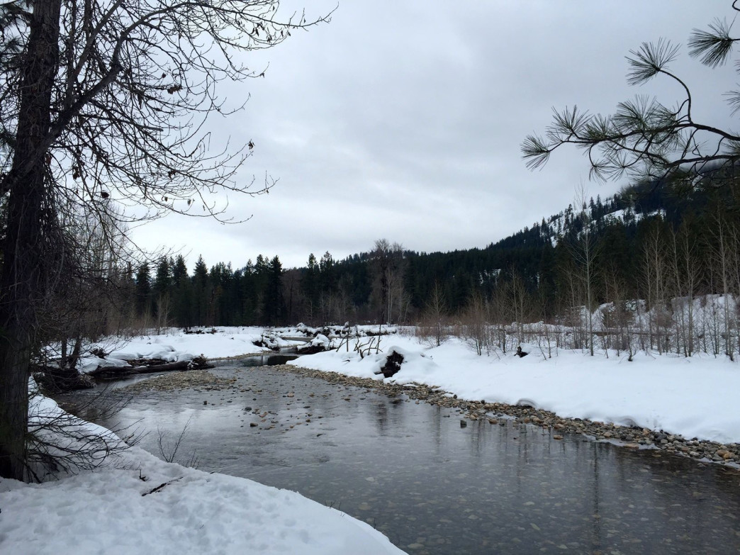 The serene Methow River provides a wonderful backdrop for a snowshoe.
