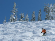 Image for Sugar Bowl Ski Resort