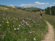 Image for Midway Pond Trail Running