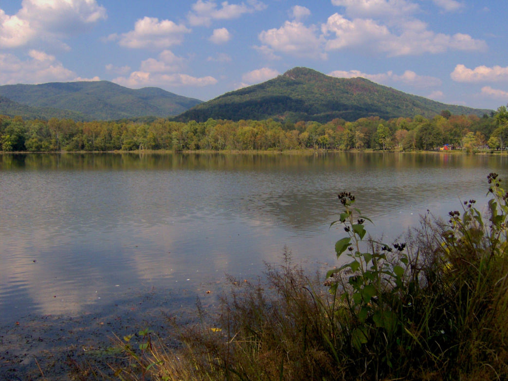 The scenic Cove Lake State Park is on the eastern edge of the Cumberland Plateau and offers access to the Cumberland Trail.