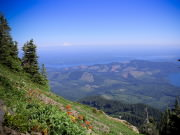 Image for Mt. Ellinor