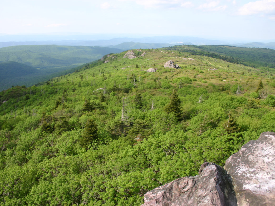 The hike up Mount Rogers features incredible views of the Jefferson National Forest.