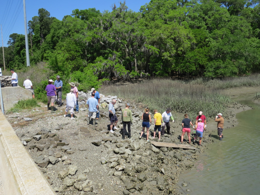 Volunteers make a line to move oyster bags to the site of the reef