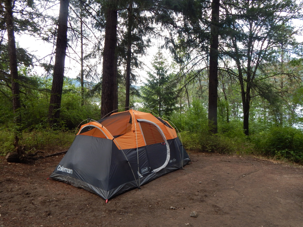 The tent sites are spacious and include a fire pit and picnic table. & Mary Smith Campground - Camping | RootsRated