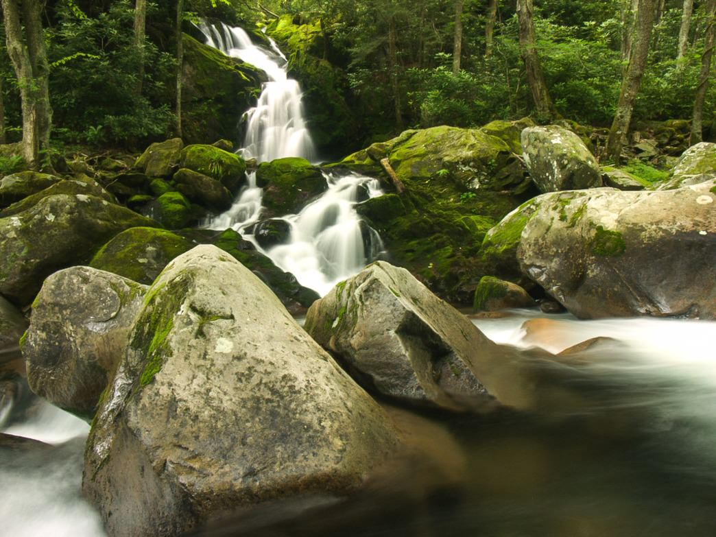 The waters of Mouse Creek Falls topple out of dense forest before meeting up with Big Creek.