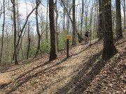 Image for Lake Lurleen State Park - Mountain Biking