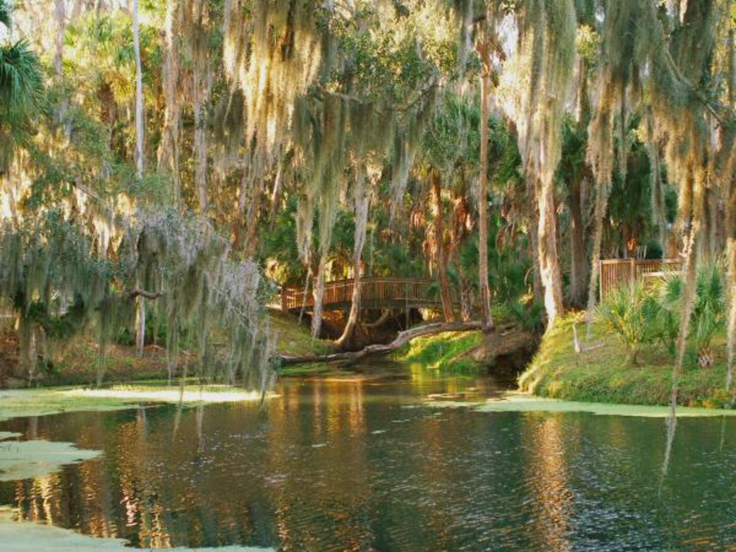 Gemini Springs in Debary Florida at Golden hour