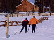 Image for Devil's Thumb Ranch - Cross Country Skiing