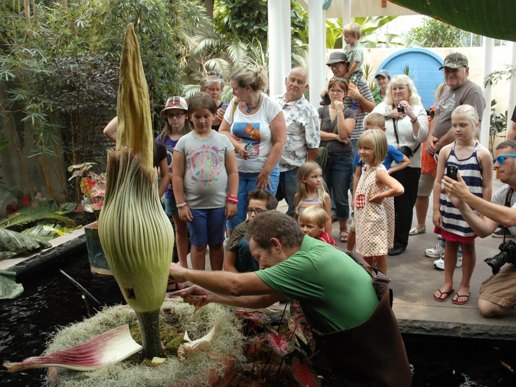DSBG introduces kids to all sorts of flora