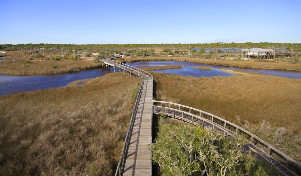 Big Lagoon State Park boasts one of the most scenic hikes along the Gulf Coast.