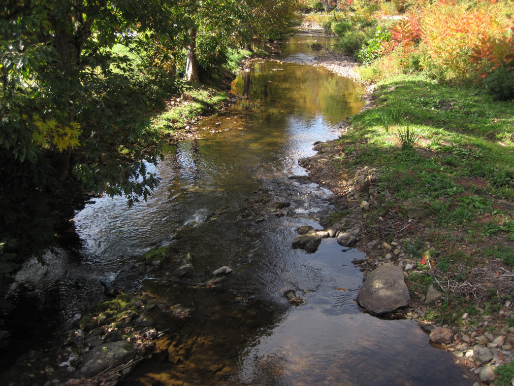 Whitetop Laurel Creek is considered the best trout stream in the state.