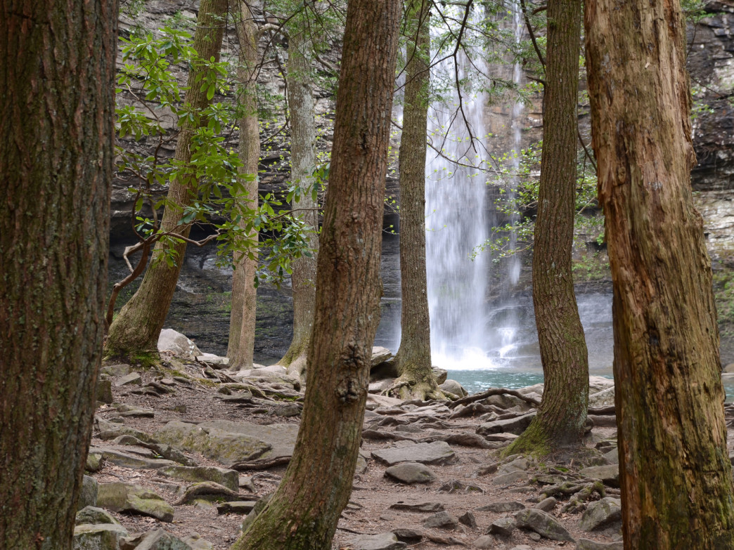 Taking in the scenery at Cloudland Canyon State Park.