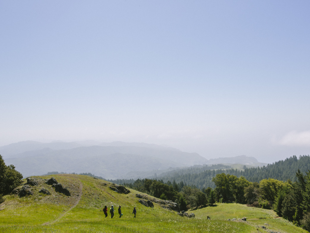 Hiking the California coast is just one of the outings that Trail Mavens offers.