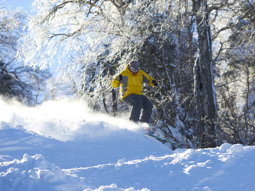 Enjoy a backcountry day among the trees at Mount Snow.