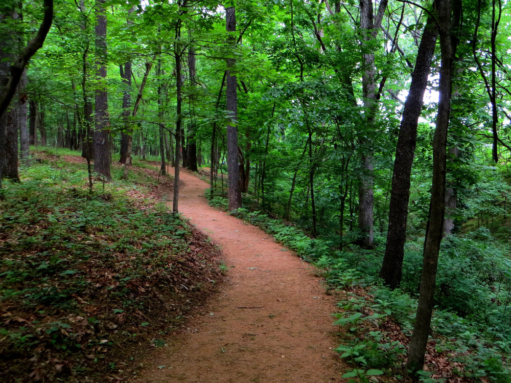 The mountain biking scene in Northwest Arkansas has grown exponentially in the last few years—there are dozens of quality trails just outside Rogers.