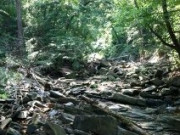Image for Potomac Heritage Trail - Hiking
