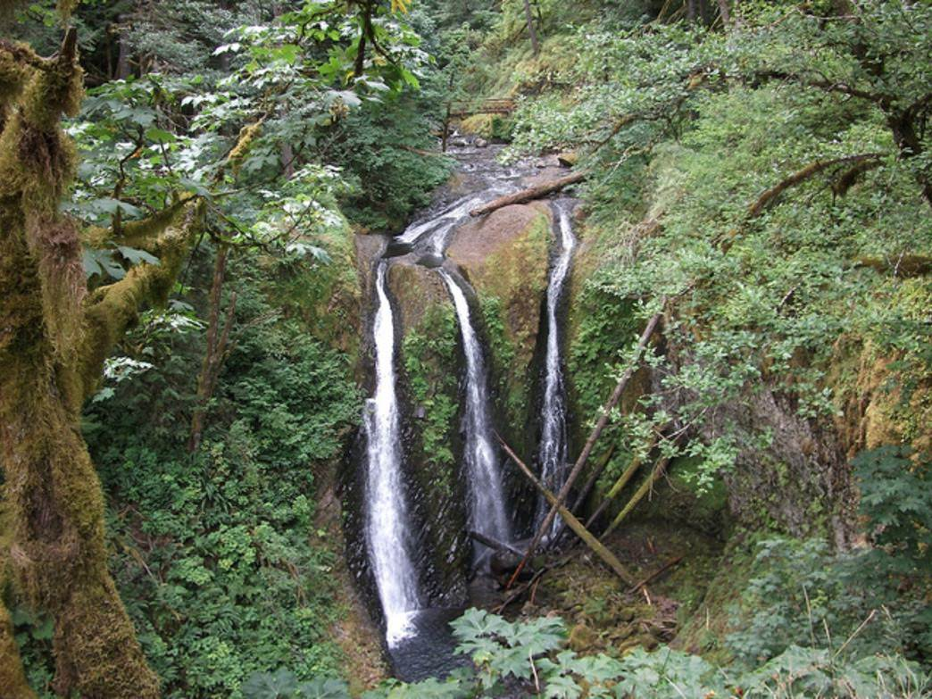 The creek feeding Triple Falls breaks into three separate streams before falling 100 or more feet below.