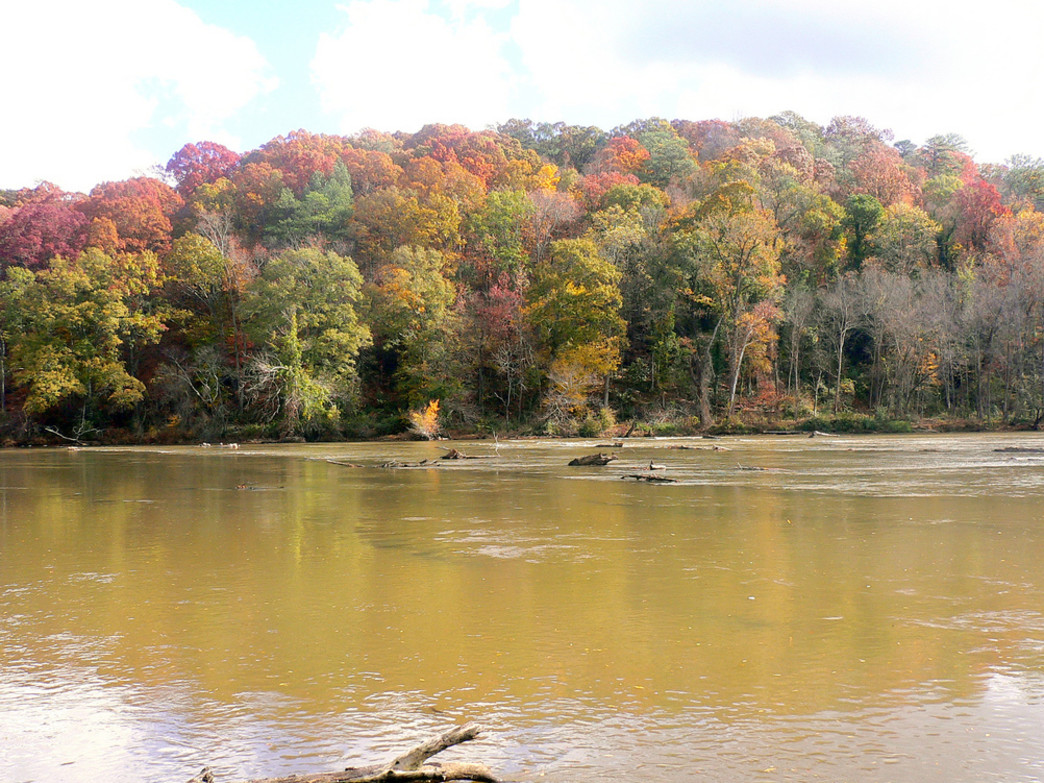 Cochran Shoals offers stunning views along the Chattahoochee River.