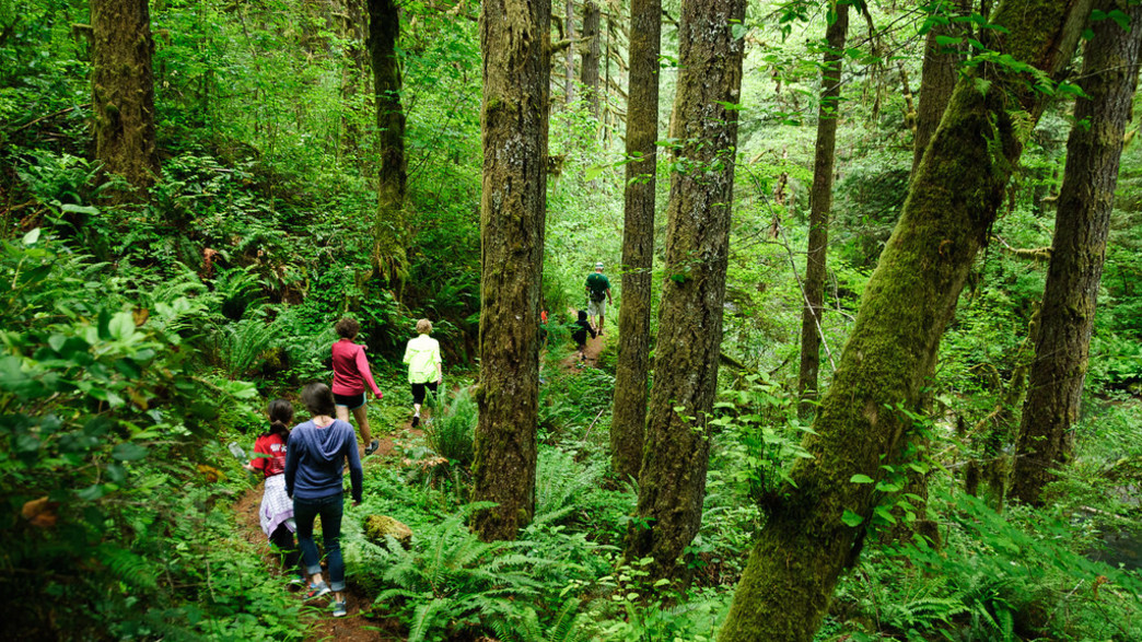 5 Portland Hikes Perfect For The Kids