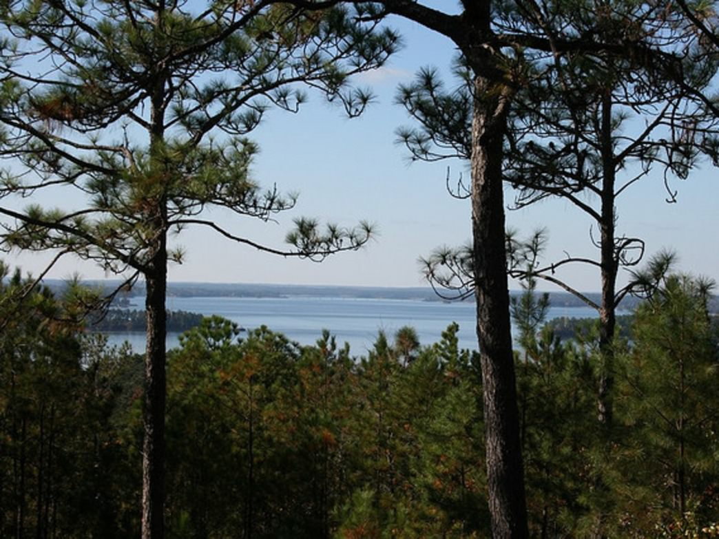 The Cherokee Ridge Alpine Trail offers spectacular views of Lake Martin.