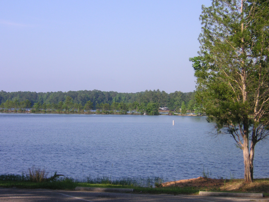 Wind Creek State Park offers plenty of camping options to take advantage of Lake Martin.