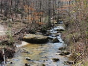 Image for Moss Rock Preserve - Trail Running