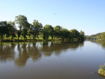 Camping Knoxville Tn >> Clinch River - Flat Water Paddling