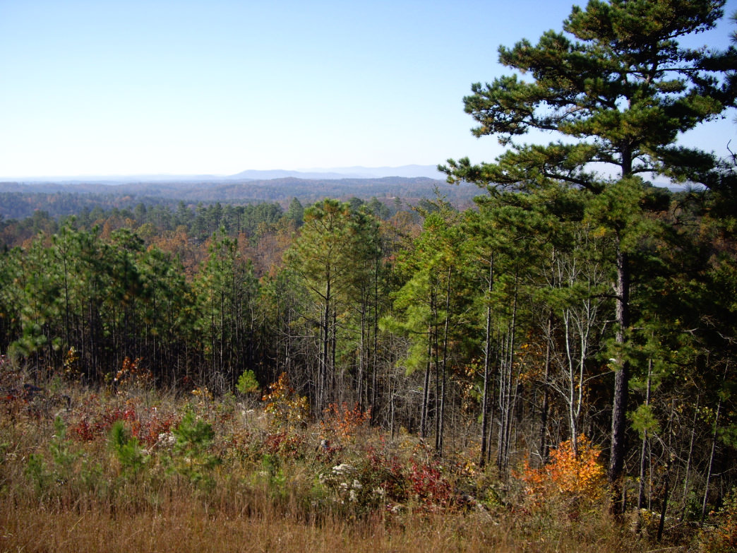 Talladega National Forest is full of sublime views, like this one from the Pinhoti Trail.