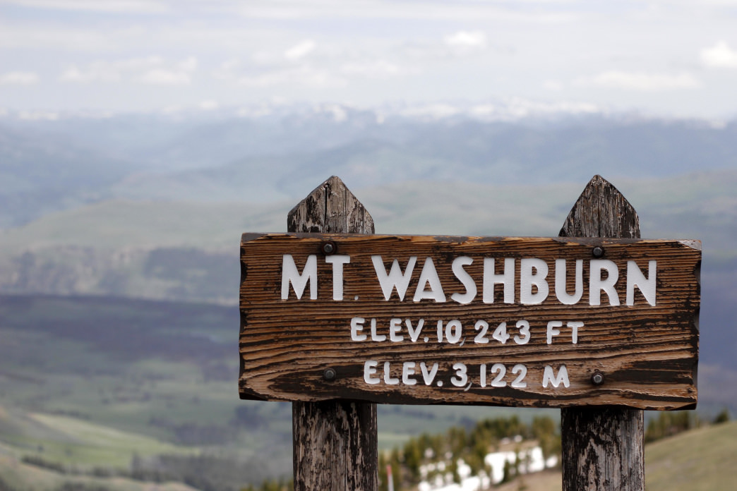 The summit of Yellowstone's Mt. Washburn.
