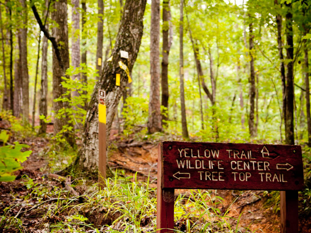 Oak Mountain State Park is a mecca for hikers.