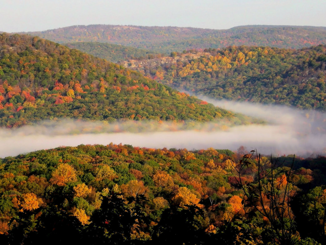 Mountain fog in Harriman State Park.