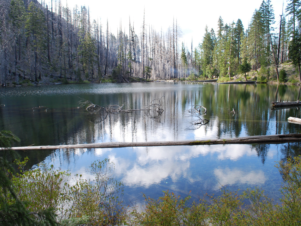 Babyfoot Lake in the eastern Kalmiopsis, home to rare Brewer's weeping spruce and other Klamath conifers.