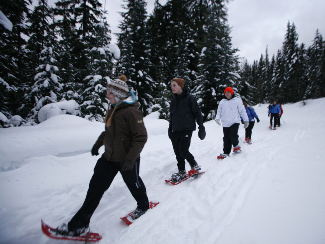 Slip into some snowshoes to explore the park in winter.