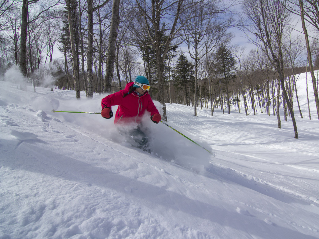 Nothing like a few good powder turns in the trees.
