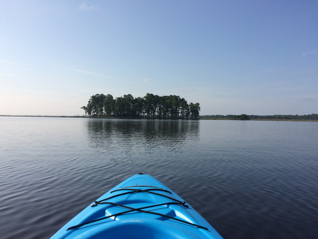 The 28,000-acre Blackwater National Wildlife Refuge is a paddling oasis on Maryland's Eastern shore.
