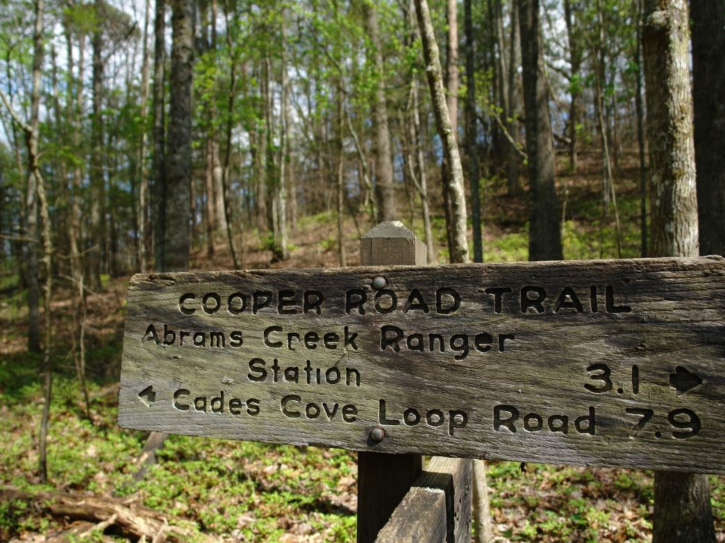 Cades Cove is a great pick for camping in the Smokies.