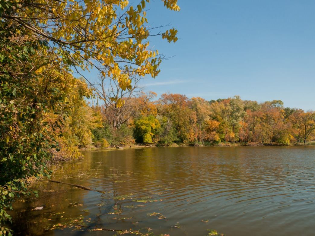 The North Branch Trail follows the Chicago River from the Caldwell Forest Preserve to Glencoe.
