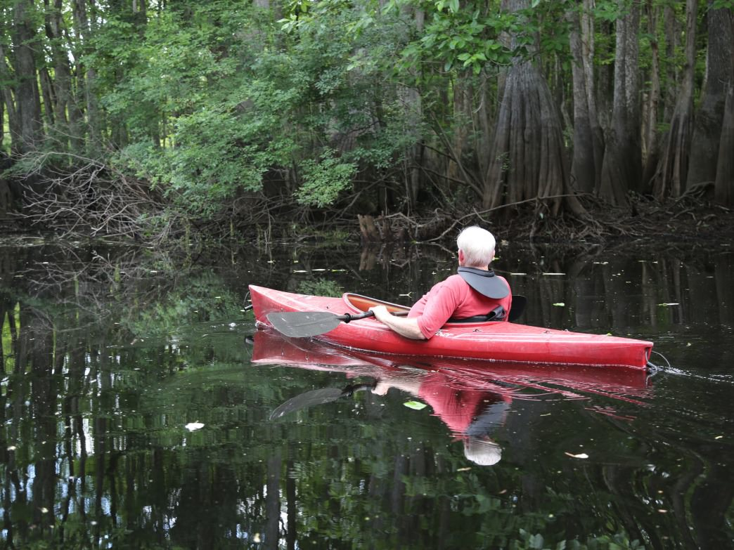 Paddling among the cypress trees at George L. Smith State Park.