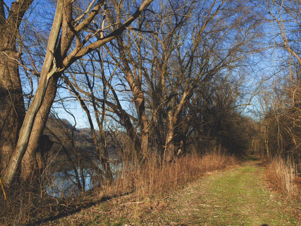 3.5 Mile Trail Along The Ohio River on Middle Island