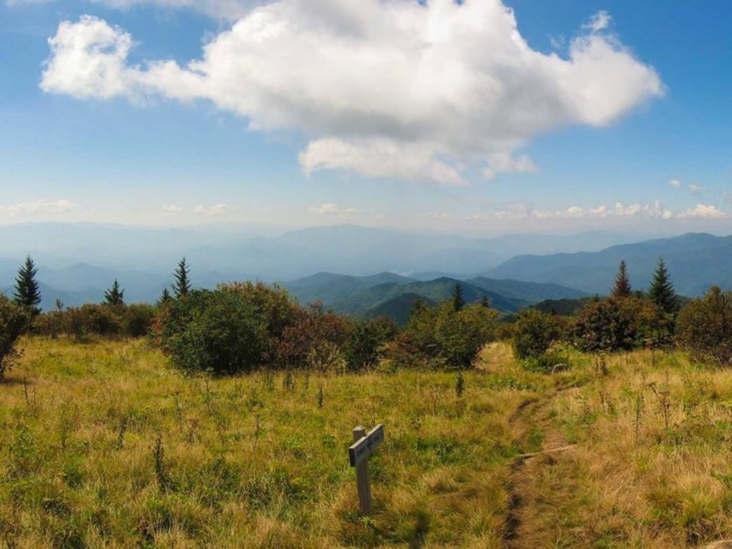 View from Andrews Bald on Forney Ridge Trail