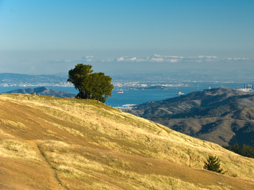 The airy views from Marin's most iconic mountain