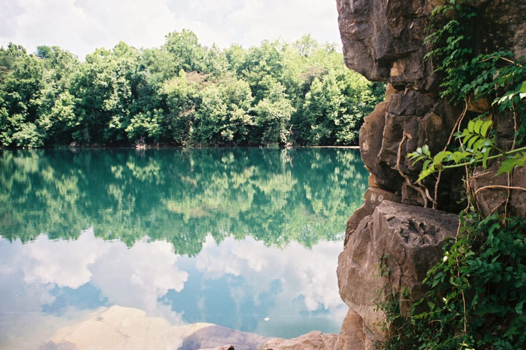 Take a canoe, kayak, or SUP out on Mead's Quarry Lake and look for freshwater jellyfish.