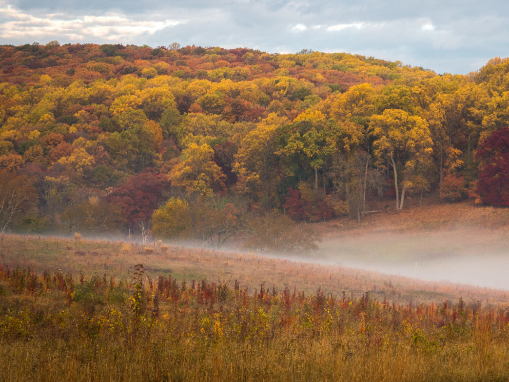 Valley Forge is at its finest in the fall.
