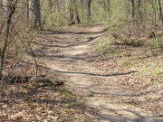 Image for Rock Cut State Park - Mountain Biking