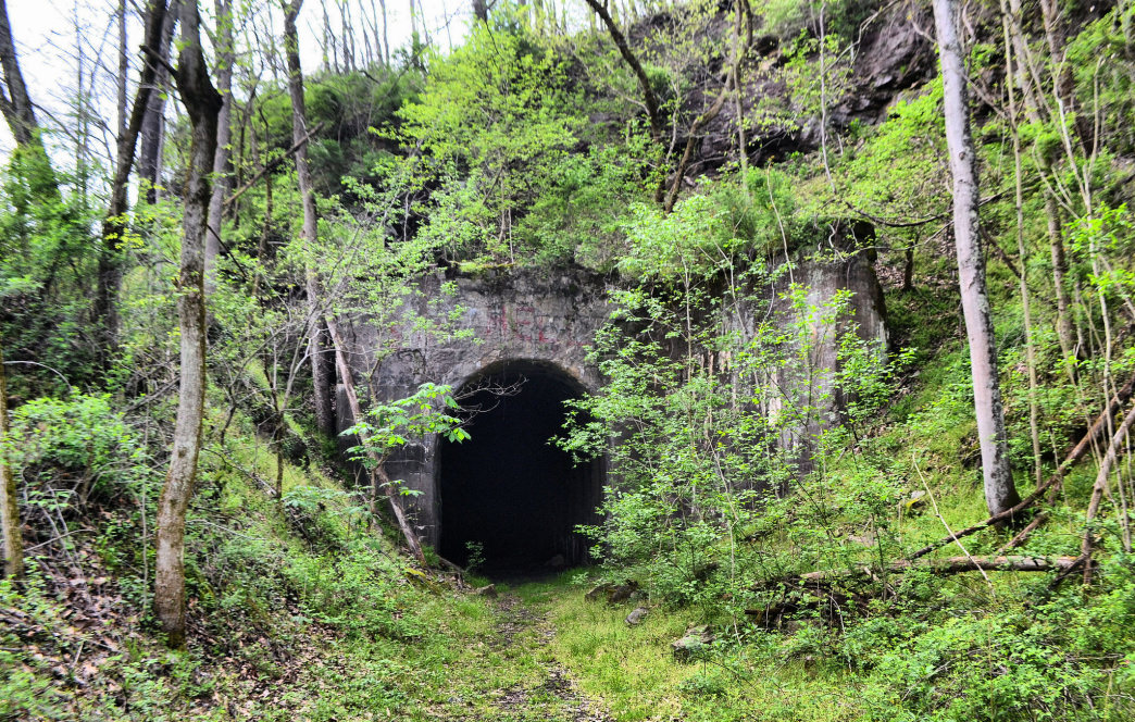 The North Bend Rail Trail travels through wilderness and rural communities.