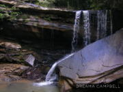 Image for Possum Creek Section - Cumberland Trail