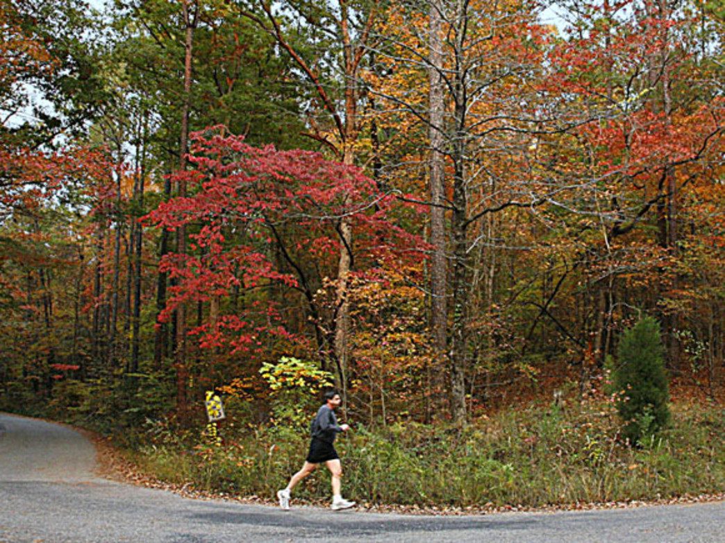Oak Mountain State Park features more than 50 miles of trails for hikers, trail runners and mountain bikers.