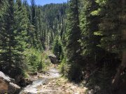 Iron Creek follows the trail most of the way!